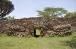 ЮНЕСКО поповнила Список Всесвітньої спадщини об'єктами з Омана, Саудівської Аравії і Кенії