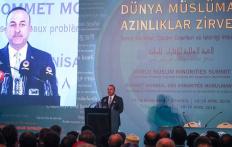 Чавушоглу: «Туреччина захищатиме права мусульман усього світу»
