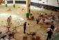 Здійснивши напад на Мечеть Пророка, терористи довели — з Ісламом вони пов'язані хіба що на словах
