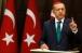 Эрдогана просят повлиять на Путина в крымском вопросе