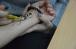 ©️ИКЦ «Аль-Манар»: 18.12.2019, активисты ИКЦ «Аль-Манар» в Харьковской госакадемии культуры, мероприятие по случаю Международного дня арабского языка