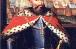 Про роль князів Західної Русі у завоювальних походах Золотої Орди
