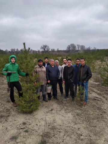 Северодонецкие мусульмане сажают деревья