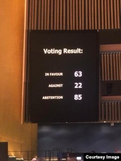 предоставлено Постоянным представительством Украины при ООН/Голос Америки (VOA)
