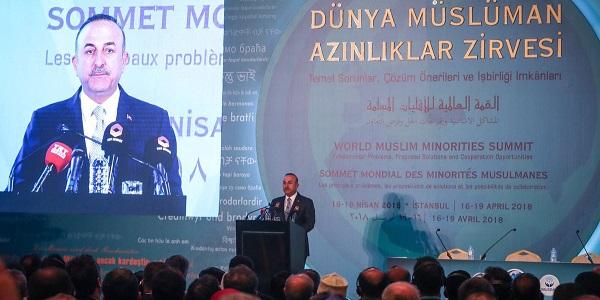 Чавушоглу: «Турция будет защищать права мусульман всего мира»