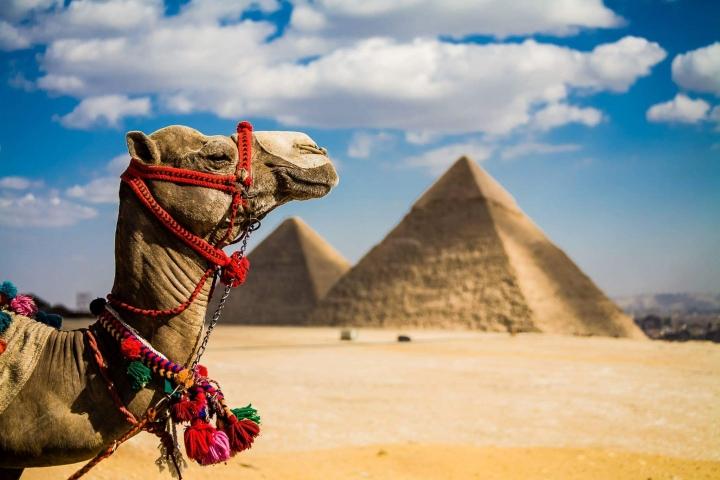 В Єгипет — за електронною візою