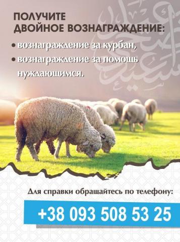 Украинские мусульмане могут делегировать общине жертвоприношение на Курбан-байрам