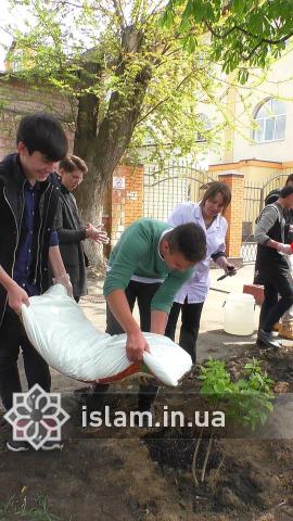 Учні гімназії «Наше майбутнє» мріють про зелене місто