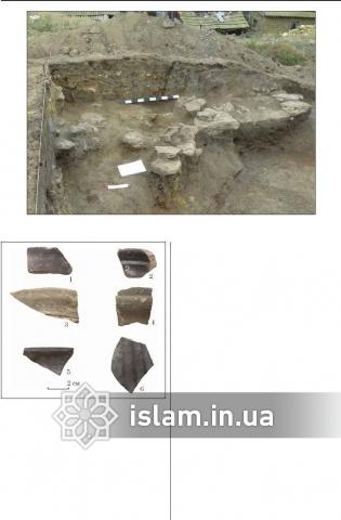 Раскопки замка в Татарбунарах