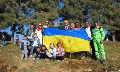 Поблизу мечеті Абу Ейші в Аммані з'явилися українські дерева