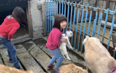 Milk Goats For Large Families of Kherson Region: a New Initiative Launched