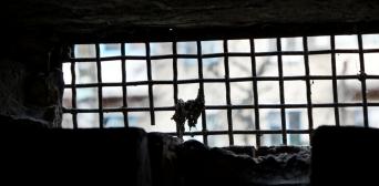 У Росії всі 50 релігійних політв'язнів — мусульмани