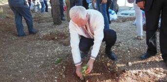 В Аммані зростатимуть українські дерева