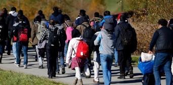 Кризис стереотипов и предубеждений: действительно ли беженцы-мусульмане — это вызов континенту?