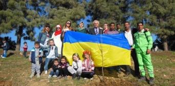 Вблизи мечети Абу Ейши в Аммане появились украинские деревья