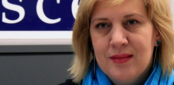 Представник ОБСЄ розкритикувала ситуацію зі свободою слова в Криму і на Донбасі