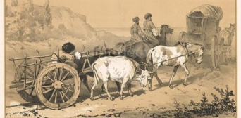 Южнобережные крымские татары